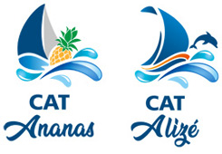 Logo Cat'Ananas and Cat'Alizé