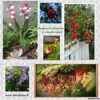 Les Kréol'' Inns - Tropical garden