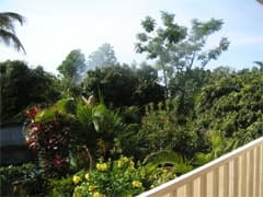 la case paradis jardin