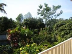 cabin paradise garden