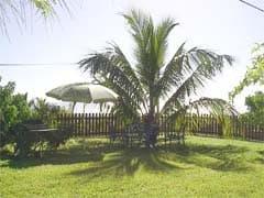 bungalow 1 parasol