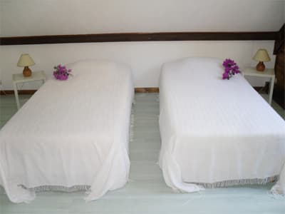 holiday sapodilla orchard room