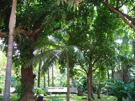 Villa Bengali 2 - Jardin