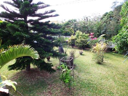 Joli jardin arboré