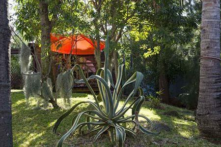 Bungalow Alamanda - Jardin aloevera