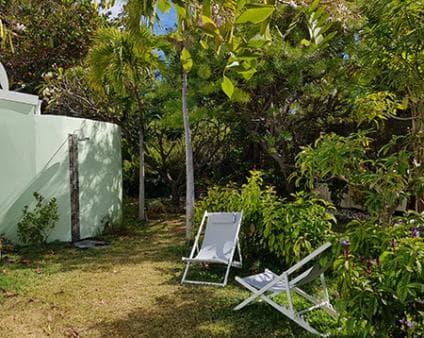 Manguier's garden