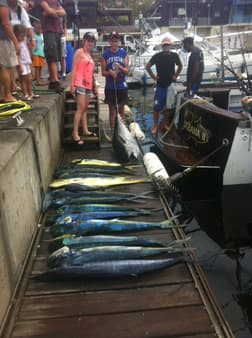 Pêche de thons bananes et dorades