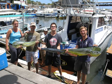Mahi mahis and wahoo