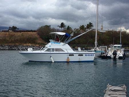 Blue - Pêche au gros à La Réunion