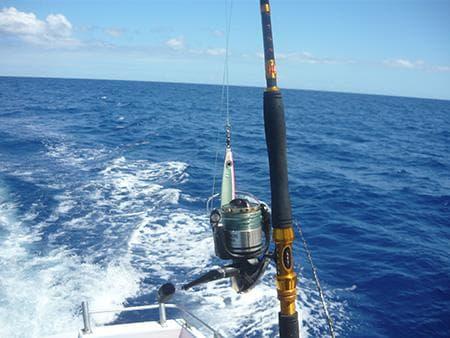 Blue - Big game fishing Reunion island