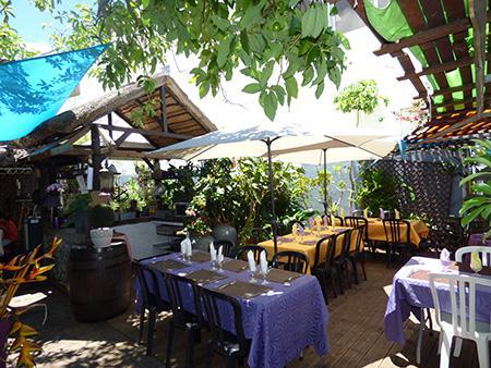 Noé's garden